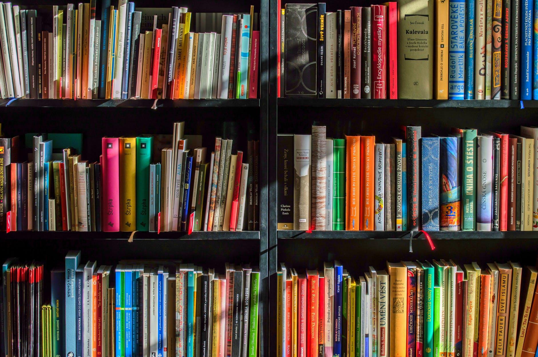 Photo of books on a shelf